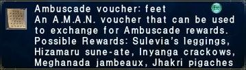 Ambuscade voucher: feet